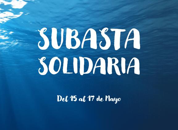Subasta solidaria Fundación Zaballos / El Deporte de Ellas y Ellos